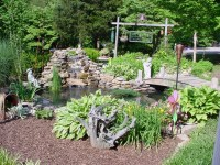 Backyard Water Features | Casual Cottage