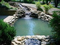 Home Style Choices: Backyard Water Features