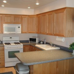 White Appliances Kitchen Omega Cabinets Stainless Vs Paint Installed Cabinet