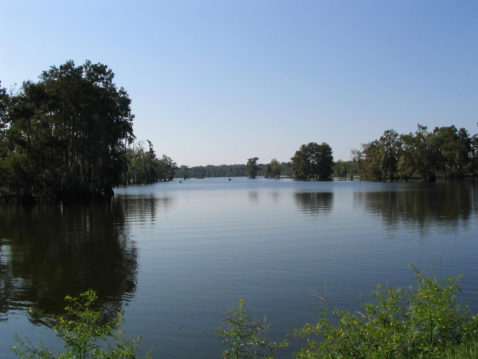 Pix of Louisiana New Orleans Lafayette Lake Charles to