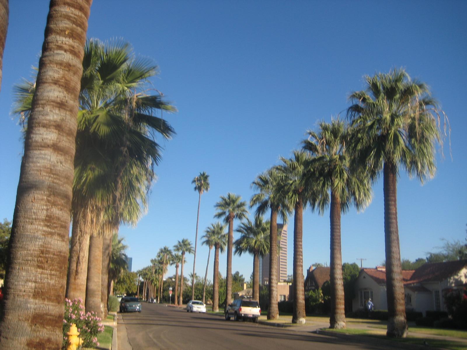 Beautiful Phoenix Mesa condos school live  Arizona