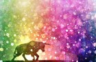 bull silhouette on rainbow background