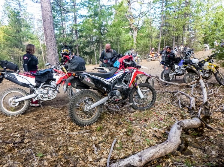 Honda's CRF250L Rally at the 2018 Sheetiron.