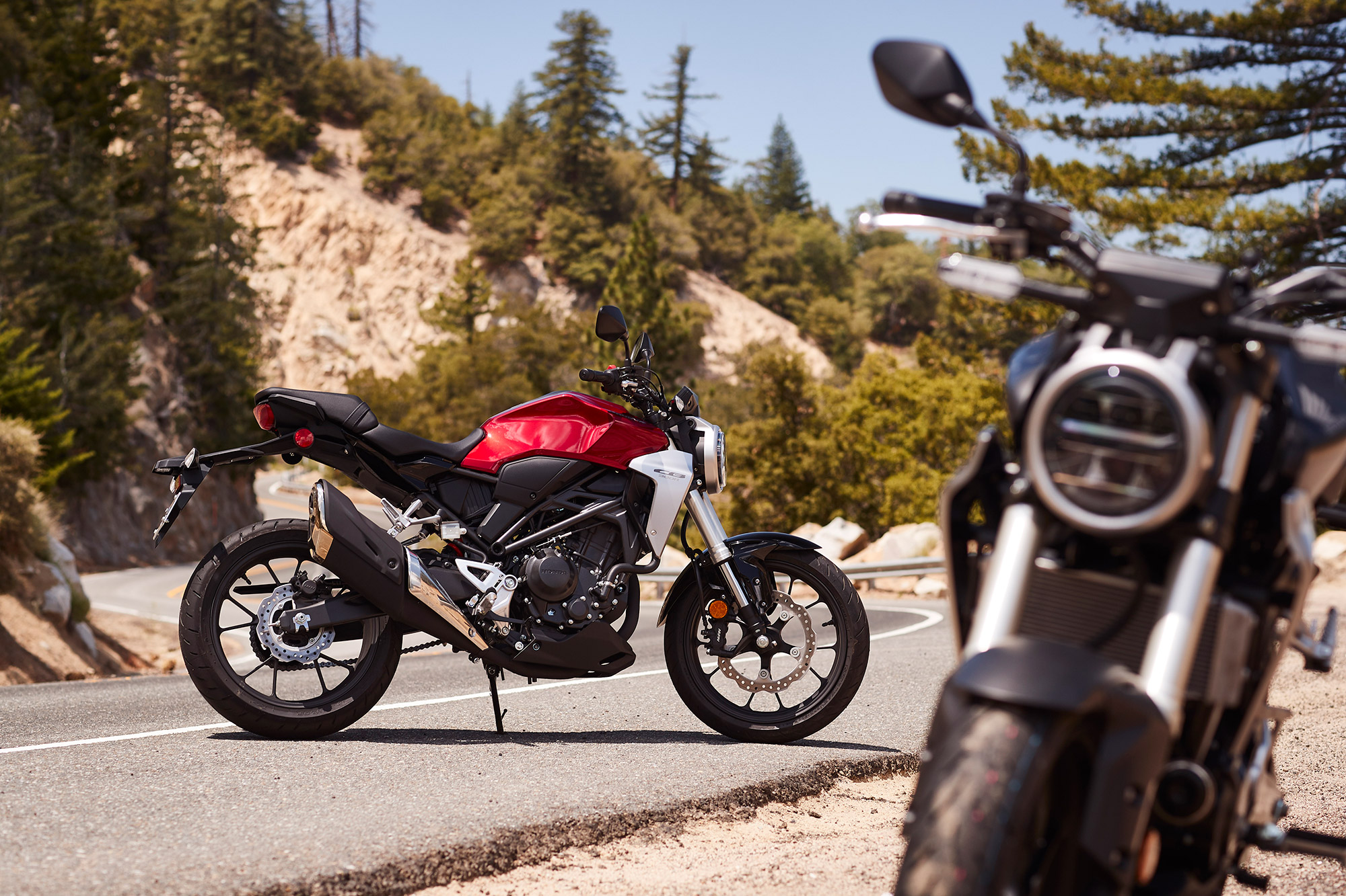 Breaking In Honda's New CB300R | CityBike Magazine