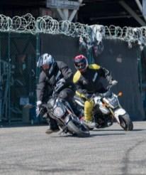 Kawasaki Z125 and Honda Grom