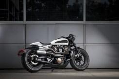 "Harley-Davidson 2020 ""Custom"" concept"