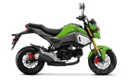 Non-ABS Grom in Incredible Green