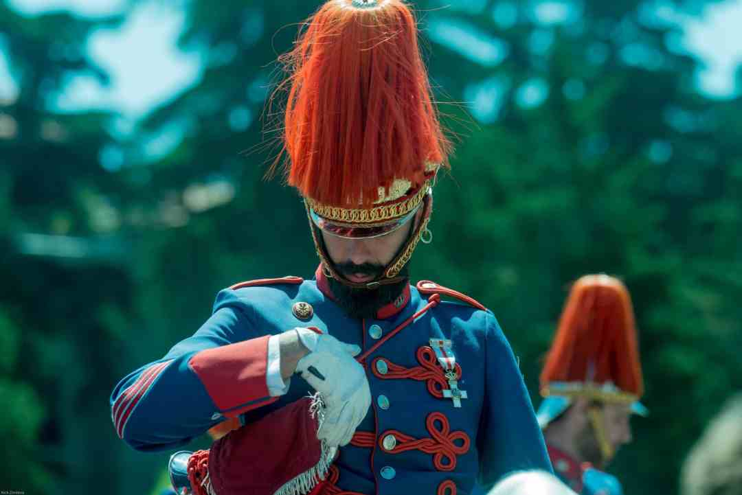 bearded mounted Royal Spanish guard