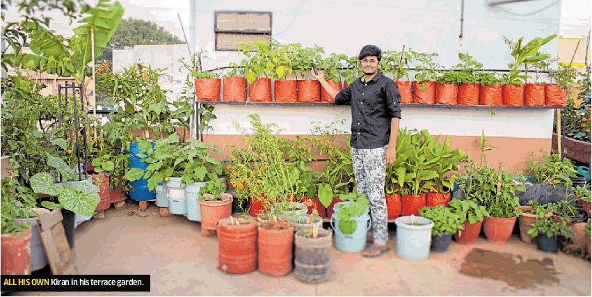 India — City Farmer News