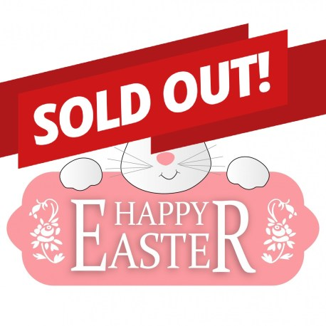 Easter DIY KIT – SOLD OUT!