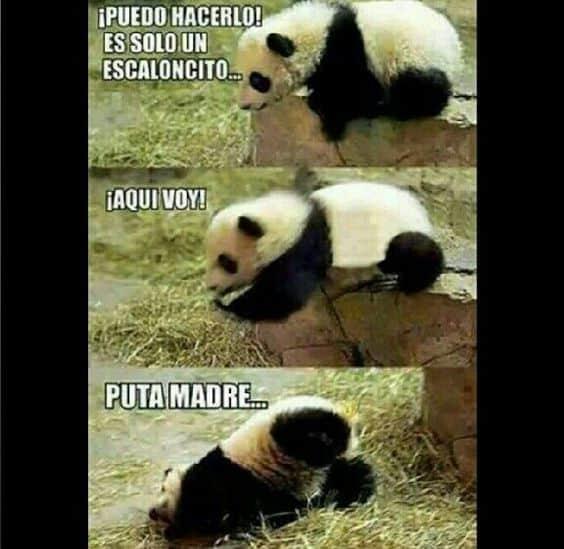How Say Something Spanish