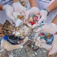 Mozione Plastic Free, Verdi Reggio Calabria: