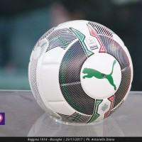 Calcio: un campione ex Juventus alla guida della Vibonese?