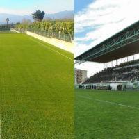 Marchio Reggina Calcio: la decisione di Girella, i tempi del nuovo bando per S. Agata e Granillo