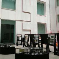Al Museo di Reggio Calabria in mostra