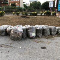 'Adotta il verde', i reggini si dedicano alla cura del decoro urbano - FOTO