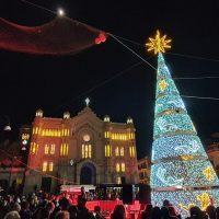 Reggio, la magia del Natale arriva in città. Si accende l'albero in piazza Duomo - FOTO e VIDEO