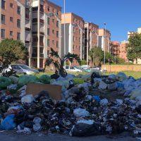 Rifiuti a Reggio, Comune alla ricerca di un sostituto 'temporaneo' di Avr e Castore