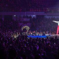 Mika in concerto svela la verità sulla scelta della tappa a Reggio