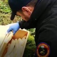 Locride, i Carabinieri rinvengono gelatina esplosiva in un terreno
