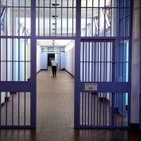 Pedigree - Le disposizioni dal carcere attraverso colloqui, lettere e utilizzo abusivo di cellulari