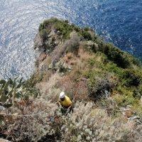 Due cittadini ripuliscono la Marinella di Palmi dalla spazzatura - FOTO