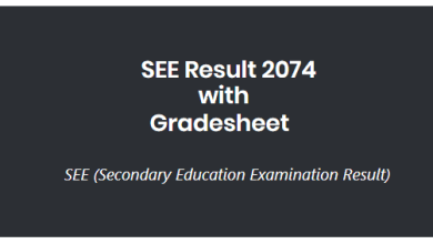 Photo of SEE 2074 Result