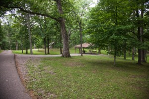 Shady camping and picnic areas at Burrell Park