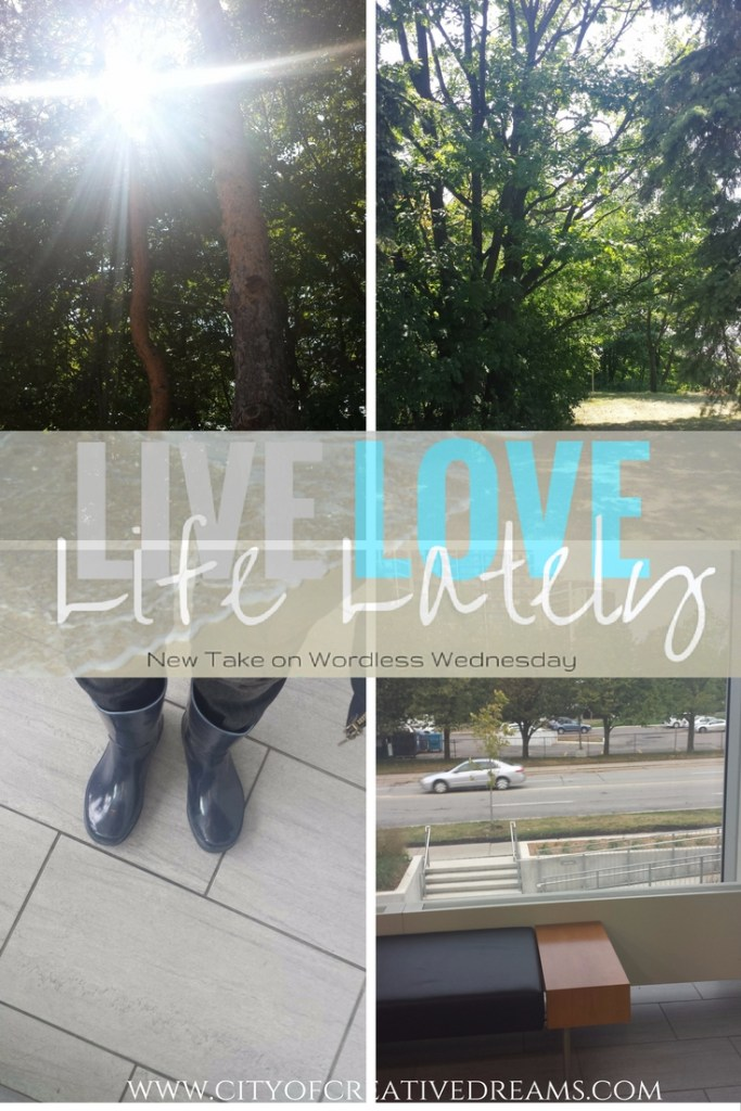 LIVE LOVE LIFE LATELY| City of Creative Dreams