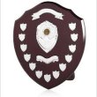 Swimmer of the month Shield