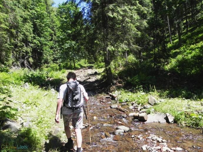 Ilva stream / Valea Ilvei