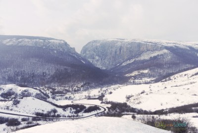 road leading to Turda Gorge