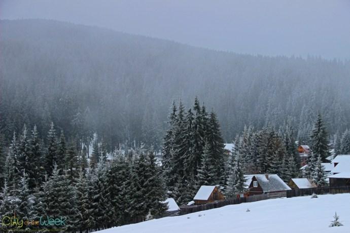 Bucin Top, Harghita Mountains, Romania