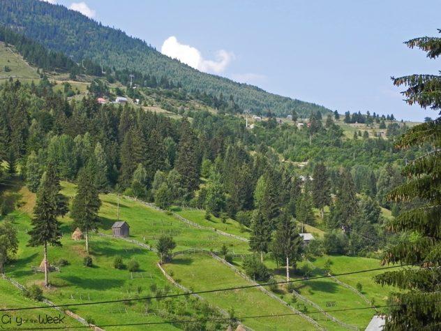 Borsa Landscape