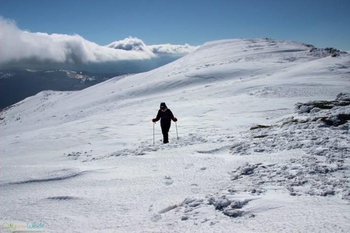hiking-in-the-rodnei-mountains-of-romania (19)