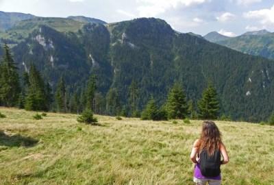 Rodnei Mountains