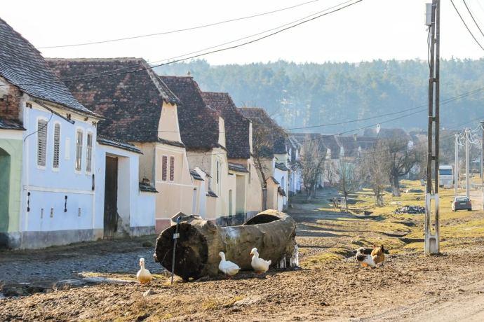 Viscri, Transylvania, Romania
