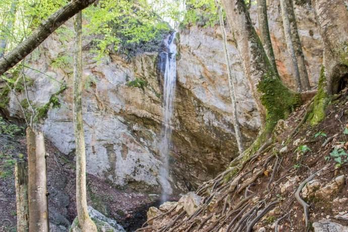 Cascada Bulbuci Waterfall, Western Carpathians, Romania