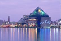July 4th Pier Party Baltimore' National Aquarium