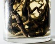 collectors-slide-OHNH-jumbo