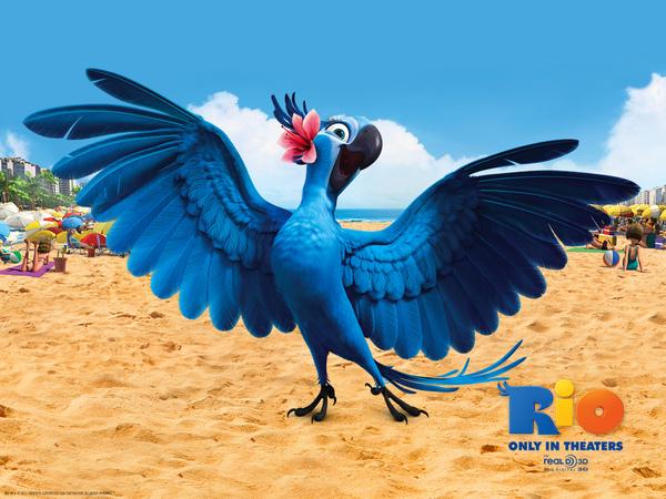「里約大冒險」嘿都一隻藍鳥仔真落漆!! - 電影心得情報版 ::::Citytalk城市通