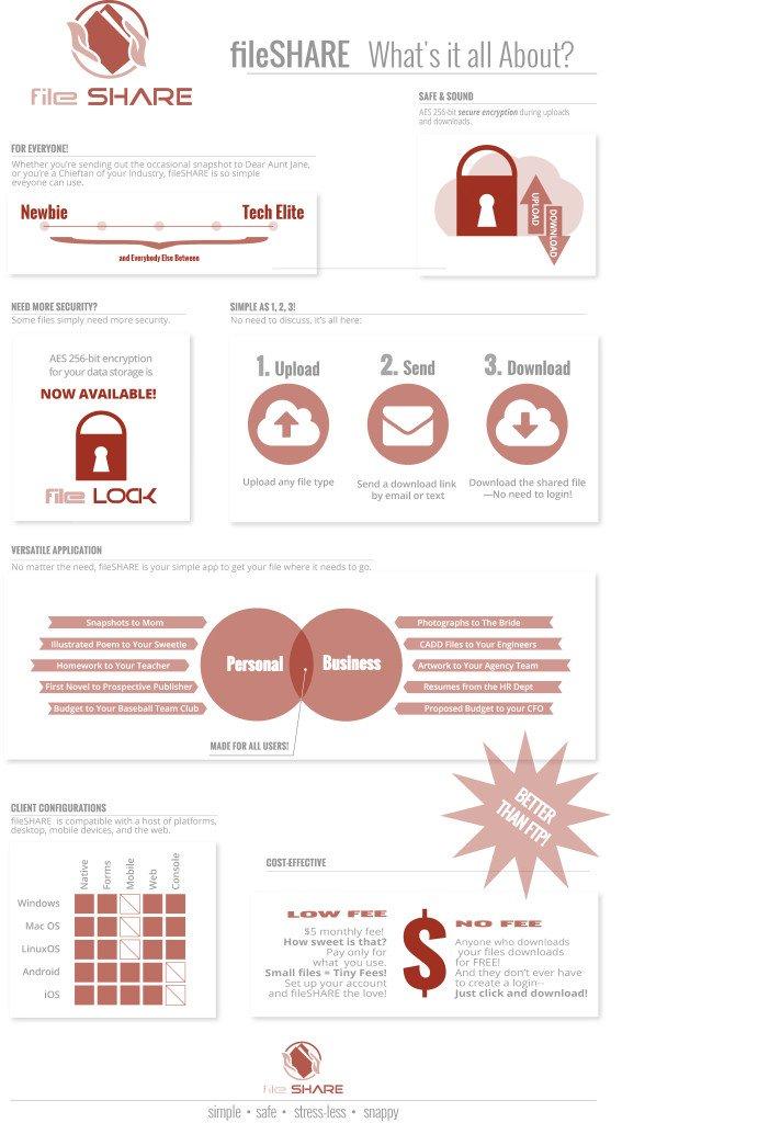 infographic for software developer