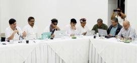Paz en Colombia: FARC-EP y Gobierno Colombiano acuerdan acelerar proceso de desarme