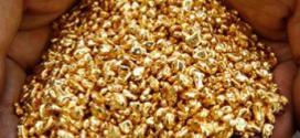453 kilogramos de oro llegan a Caracas provenientes del estado Bolívar