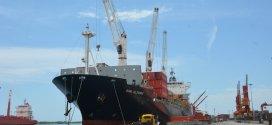 Arribaron al país: 30 mil TM de trigo y 495 contenedores de alimentos y medicinas