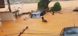 Más de 400 muertos deja avalancha de lodo en Feetown Sierra Leona