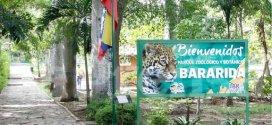 Parque Zoológico y Botánico Bararida festejará 51 años de fundado