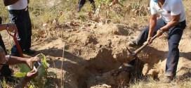 Descubren más de 1.500 restos humanos en 621 fosas clandestinas en México