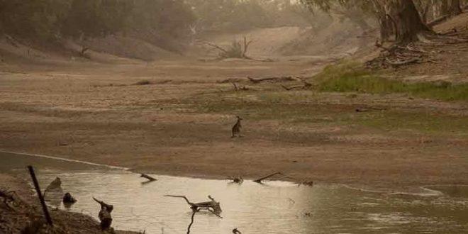 Estudio científico revela que del 51 al 60 por ciento de ríos y arroyos dejan de fluir o se secan gran parte del año