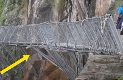 Different types of bridges